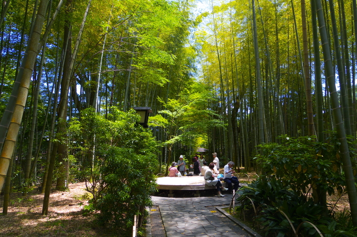 「竹林の小径」の中程には、円形のベンチが設けられています。  散策の途中で腰掛け、竹林の清々しさを味わいながら、休憩しましょう。