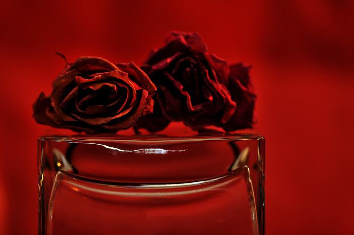 バラはお花の部分だけをアレンジしておくのも素敵。ひとつのお花だけでも哀愁のあるストーリーを感じます。