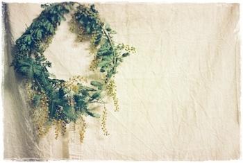 ミモザは銀葉と呼ばれる葉っぱも特徴的です。葉っぱの部分もたっぷりと飾ってあげると緑と黄色のコントラストがとても素敵です。