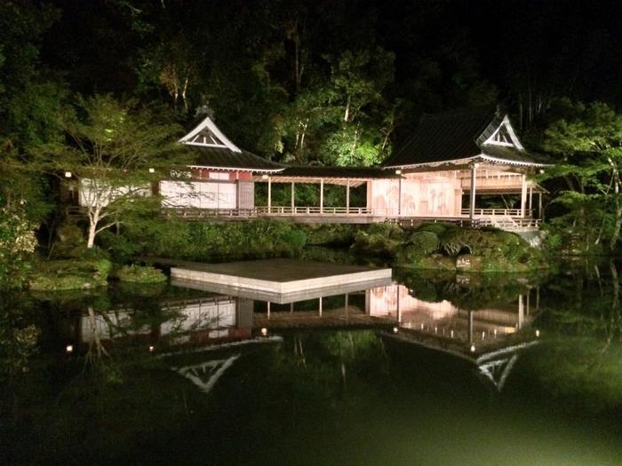 広大な池が敷地いっぱい広がっていますが、日が暮れると幻想的な雰囲気に。  情緒溢れ、野趣豊かな老舗旅館です。