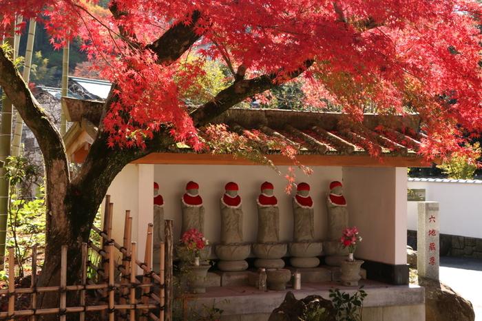 修善寺は晩秋の紅葉時だけでなく、四季折々に自然が織り成す素晴らしい景色が眺められる地です。  ぜひ足を運び、温泉と風情に浸り、小京都「修善寺」を満喫して下さい。