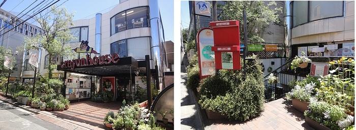 """「オーク表参道」(旧森英恵ビル)から入った、通称""""ロハスストリート""""沿い。レストランは階段を降りた地下1階にあります。"""