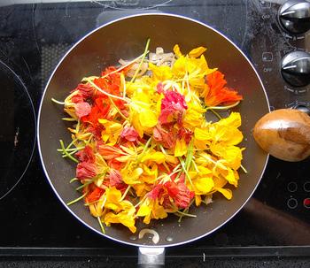 ポタジェガーデンに加える彩りとして、お花の代わりにエディブルフラワーを植えてみるのも良いですね! 観賞用だけでなく、育ったら食べられるのがうれしい。いくつか育てやすいものをご紹介します。