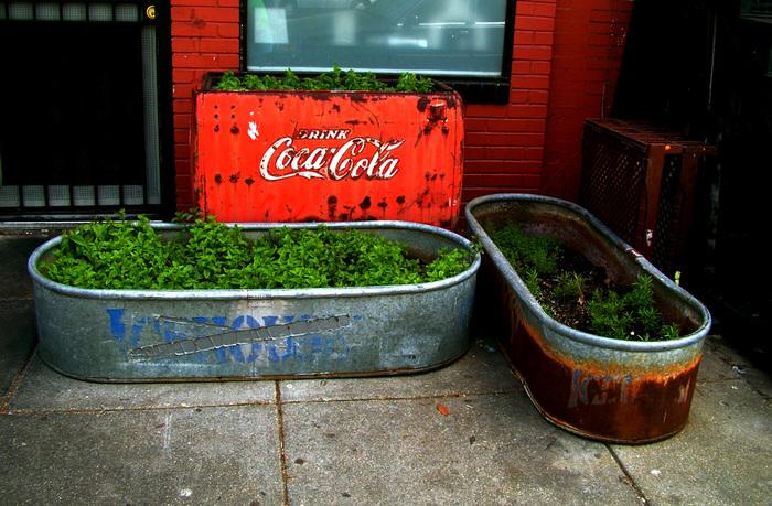 ブリキ缶の経年変化だって、いい味出してくれるんです!無機物と有機物の融合がなんともオシャレな菜園に。