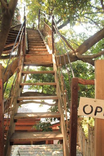 """この階段を登ると、そこは""""トム・ソーヤーの冒険""""に代表される絵本や童話の世界。まるで秘密基地みたい!  ツリーハウスを楽しむためには、歩きやすい靴を履いていくのがおすすめです。"""