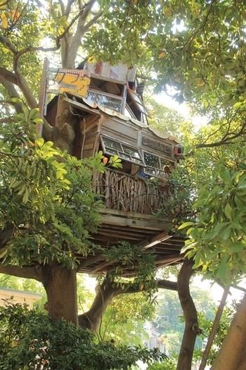 木の上の秘密基地!? ツリーカフェ「なんじゃもんじゃカフェ」に行ってみよう♪