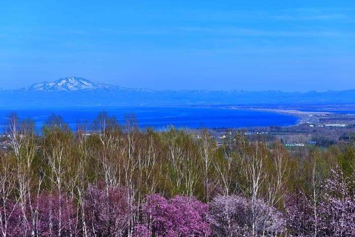 オホーツク流氷館がある天都山からは素晴らしい眺望が待っています。眼下に広がる景色の素晴らしさから、天都山が国の名称である理由がよく分かることでしょう。