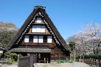 生田緑地には様々な施設があり、古民家と桜の組み合わせといった景色も楽しめます。