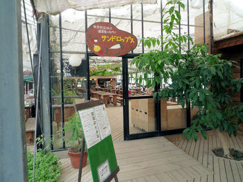 奥へ進むと、天井までグリーンの植物で彩られたオープンカフェレストラン「サンドロップス」があります。こちらも大きなガラス張りの窓で囲まれ、ガーデンを眺めながら食事やお茶ができます。またペット連れの方にはテラス席の用意があります。