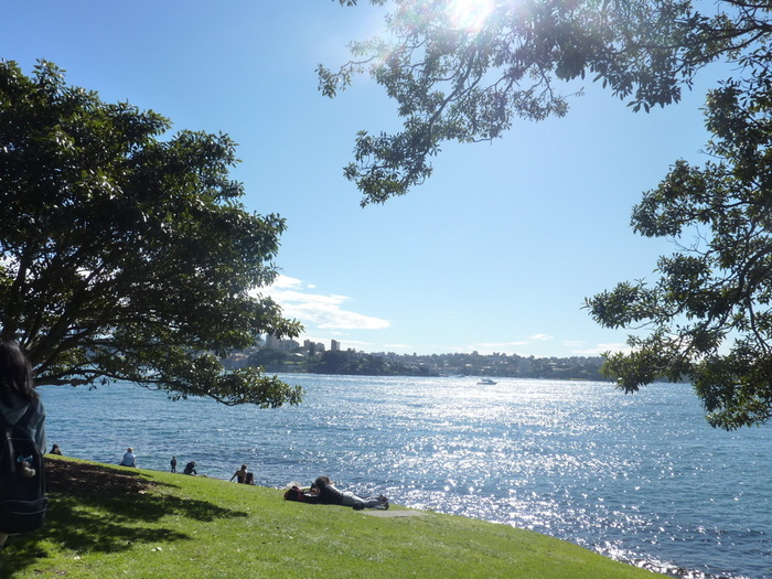 いかがでしたでしょうか。  今回はアクセスがしやすく、観光する人にも人気の高いビーチをご紹介しました。どのビーチも、シティ中心部からバスやフェリーでアクセスしやすく、休日を過ごすのにぴったりなビーチです♪  ぜひ、シドニーにお越しの際は美しいビーチを満喫してくださいね!