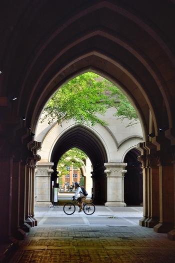 """【画像は、法文館の通路。アーチ状のデザインは""""ゴシック様式""""と呼ばれる建築様式。東大では、設計者の名前を冠して""""内田ゴシック""""と愛称されています。】"""