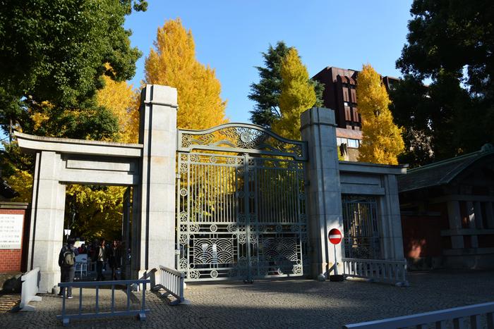 """東大の象徴である「赤門」は大学の正門ではありません。赤門を過ぎ、そのまま本郷通りを進むと、東大の""""正門""""に。"""