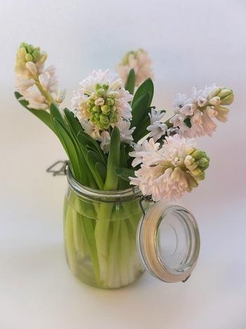 自分で育てた花を、切り花としてお部屋に飾るのも素敵ですね。