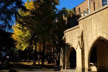正門すぐに見えるのは、農学1号館と2号館。正門入って右手が、1930年完成の1号館・左が1936年完成の2号館。いずれも内田祥三の設計です。弥生キャンバスも本郷キャンパス同様に緑豊か。