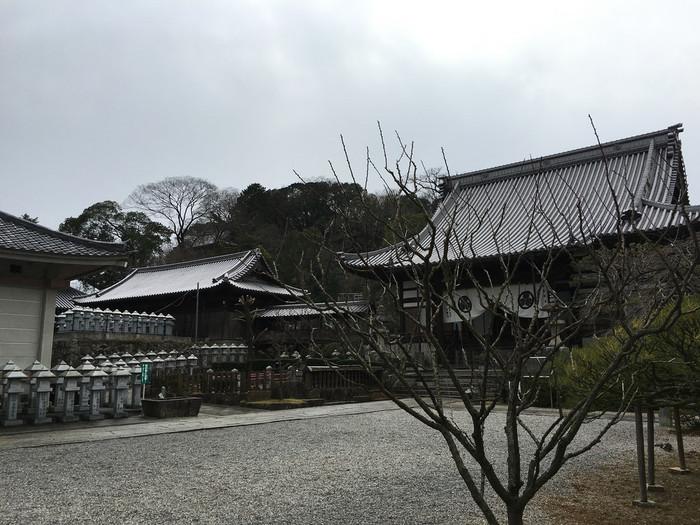 こちらの法然寺を皮切りに、築100年以上の歴史的建造物なども残されていて、なまこ壁の土蔵があったり、板壁のある町家が残っています。なんだかタイムスリップしたみたいな雰囲気です。