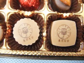 東京大學チョコレート」は、東京大学土産の一番人気。メリーチョコレートカムパニーの特別限定商品です。