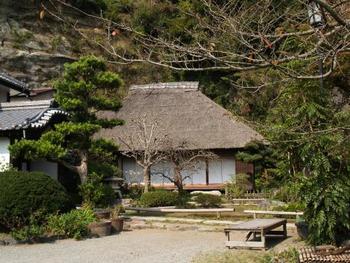 本堂の茅葺屋根と深緑を楽しんでほしい名所。夏から初秋にかけては、「芙蓉」や「彼岸花」も楽しめます。初秋の「萩」も。
