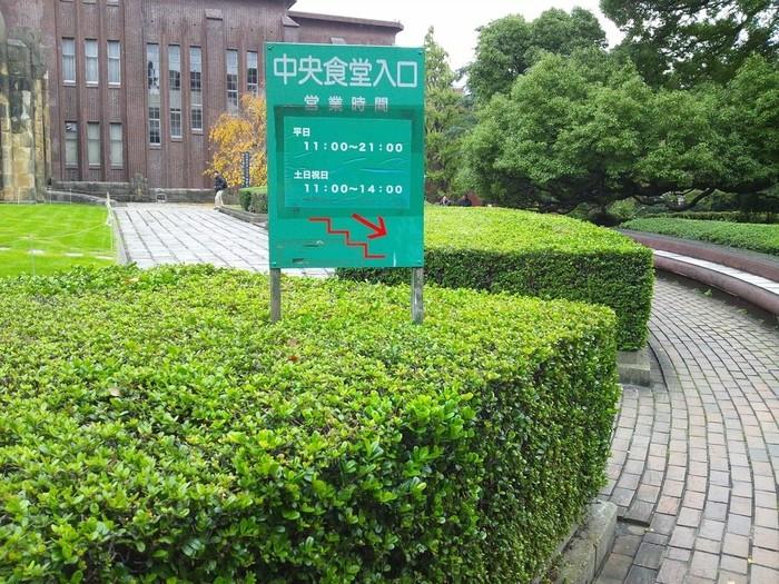 本郷キャンパスを散策するのなら、「中央食堂」も見逃せないスポットです。「中央食堂」は、安田講堂前の芝生広場の地下。