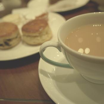 ミルクティーにもいろんな味があるようですね。  そもそも日本ではストレートティーやレモンティーが主流で 紅茶にミルクと砂糖を入れることが浸透するまで、ずいぶんな時間がかかったそうですよ。  寒い冬は、仕事や勉強、お出かけの合間にほっとミルクティーで一休みはいかがでしょうか?
