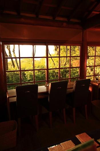 このカフェで大人気なのが、こちらのカウンター席。山の中に浮いているような不思議な感覚。 東側の窓からは、大文字山を眺めることができるのだとか。