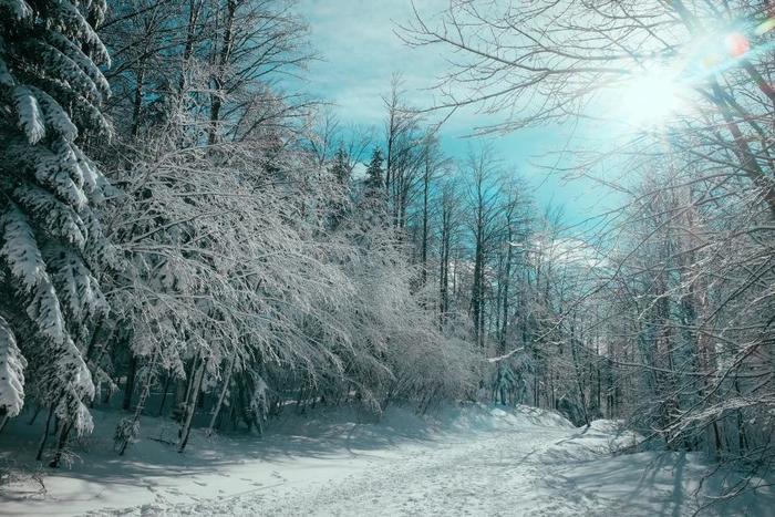 冬の定番曲といえば、EnyaのOnly Time。冬の情景を思わせる、幻想的なメロディと透き通るような歌声が特徴です。冬のおうちでのリラックスタイムにおすすめです。