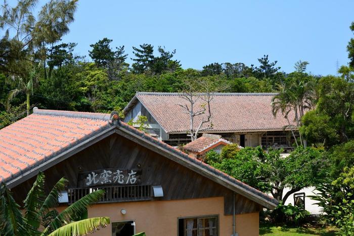 沖縄の広く大きな空 やちむんを焼く為の共同釜のオレンジ屋根とのコントラストが最高です!