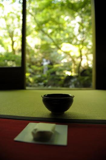 いかがでしたか? 本格抹茶って、ちょっと手が届かないかも・・と思っていた方も、気楽に味わえるお店が京都にはたくさんあるんです。 有名な観光地やお土産だけでなく、こんな素敵なカフェを目的地に、旅を楽しんでみるのも素敵ですね!