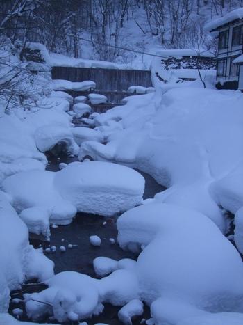 ベストシーズンは間違いなく冬! 綿菓子のようにモコモコとした雪が一面に降り積もり、おとぎ話のような世界観が広がります。