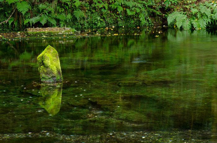 池山水源を守る水神様は2体あり、ひとつは江戸時代の大水害で流されてしまった後に祀られたもの。そしてもうひとつは流されたと思った水神様が池の底から現れたもの。いかにも神秘的な雰囲気を持つこの水源に相応しい逸話です。