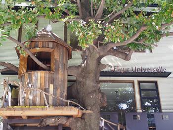 『トムソーヤの冒険』のトムやハックが顔をのぞかせそうなツリーハウスがあります。