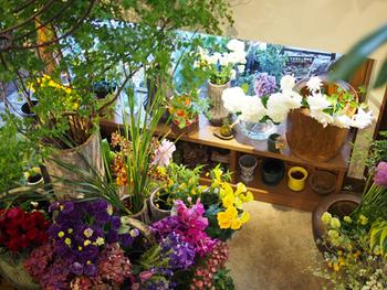 お花屋さん×カフェの組み合わせはナイスアイディア。