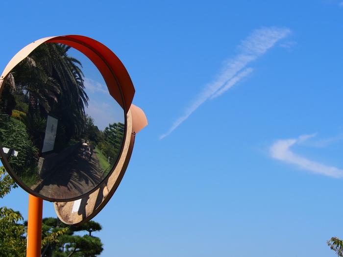 初島の左半分を占めるのが「初島アイランドリゾート」。 リゾートの名の通り、亜熱帯植物が南国気分を連想させます。