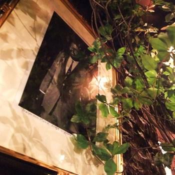 新宿の喧騒に疲れたら、昔なじみの懐かしい雰囲気のお店でのんびり過ごしてみるのもいいかもしれませんね。