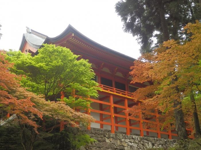 最大の魅力はそのアクセスの良さにあります。京都から電車で20分、大阪からは50分と一時間を切るこのアクセスの良さは魅力的ですね。  また、比叡山のお膝元として観光のついでに宿泊される方も多くいます。京都でホテルを探すと大変ですが、距離的にもあまり変わらないならおごと温泉で…という方も多く最近は特に活気づいてきました。
