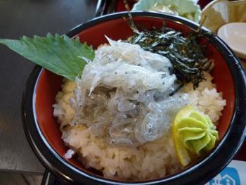 鳴門海峡の流れの速い海流で育った上質な淡路島産の生しらす丼も大人気です。こちらは道の駅うずしおレストランで食べられる「生しらす丼かき玉汁」。