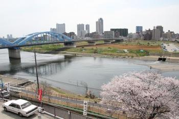 神社は多摩川を望む河岸段丘の高台にあり、走行中の東急東横線をはじめ、晴天時には、遠く大山山系や富士山も望めます。