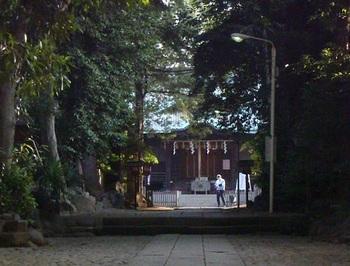 渋谷区に残された貴重な自然林の緑に囲まれてお参りできます。