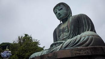 鎌倉と言えば、大仏が有名ですよね。この大仏の裏通りから北鎌倉駅まで抜ける「大仏ハイキングコース」があるんです。