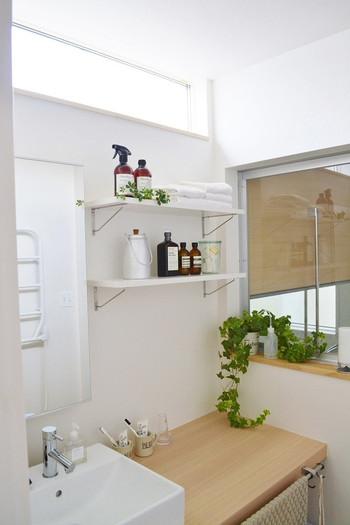 洗面所やサニタリー、皆さんはどのようにお使いでしょうか。それほど広くない面積なのに、必要なものが多くてどうしてもごちゃごちゃしてしまうとお悩みの方も多いのではないでしょうか。きれいですっきりとした洗面所に憧れますね。