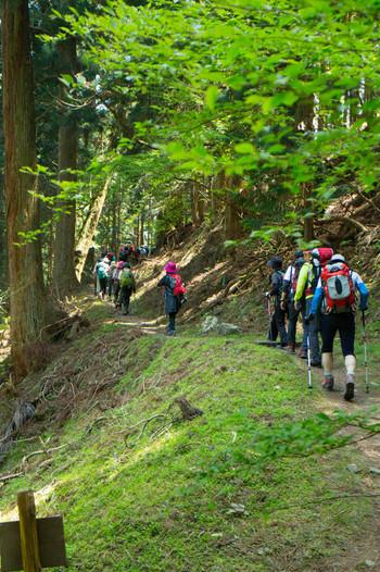 ■登りも下りも、基本は「小股」歩き 疲れない歩き方のポイントは「小さな歩幅で歩く」こと。登りで足を大きく上げる動作は筋肉を疲れさせますし、下りの大股歩きは膝や足首への衝撃が増し、痛みなどの原因となることも。  ■休憩をとるペースは? 複数人で登るときは、一番体力のない人のペースを参考に、数十分に一度、短い休憩を挟みましょう。水分や栄養補給はこのタイミングで。  ■マダニに注意!肌を出さない服装を 登山は日除け・虫対策のために肌を出さないスタイルが基本。虫除けスプレーは2時間程度で付け直すのがいいでしょう。 ヤブなどに潜んでいる「マダニ」は、噛まれると死に至る場合もあり危険。万が一噛まれたときは無理に取り除かず、病院へ行きましょう。