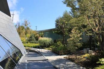 美術館の周りを散策するのもいいですね。 美しい樹や草花のカラーリーフガーデンが季節ごとに違った顔を見せてくれます。