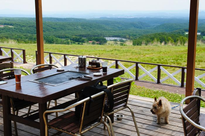 園内では高原の景色を見ながらバーベキューも食べる事が出来ます。しかも食べ放題。こんな素敵な景色の中なら食も進みそうですね。