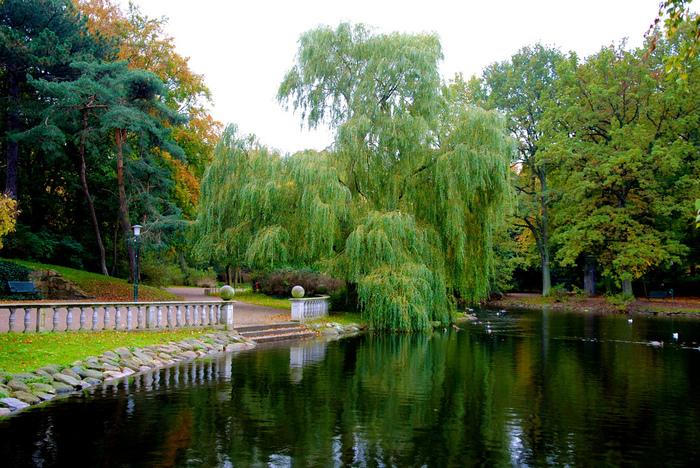 マルメ城の外周部にある公園です。 スウェーデンの四季を楽しめるほか、野鳥の観察地としても人気のスポットのようです。  少し歩くだけでも、いい気分転換になりますよ♪