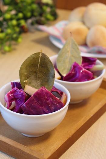 紫キャベツの色合いがキレイなピクルスは、サラダ感覚でそのまま食べても、こってりした料理の付け添えにしても美味。食感のアクセントにもなるリンゴの配分量がポイント!