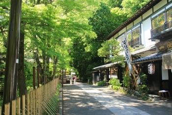 深大寺周辺には、なんと20店舗ものそば屋さんが軒を連ねています。