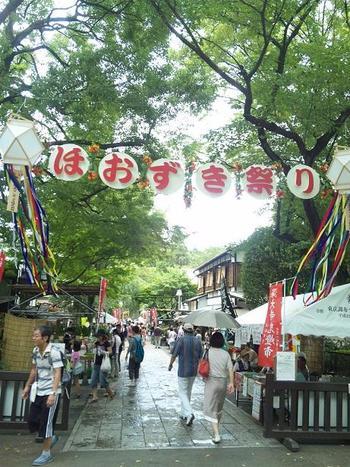 深大寺の夏の風物詩といえば、毎年7月に開催される「ほおずき祭り」。参道と境内に鮮やかな橙色のほおずきが並びます。