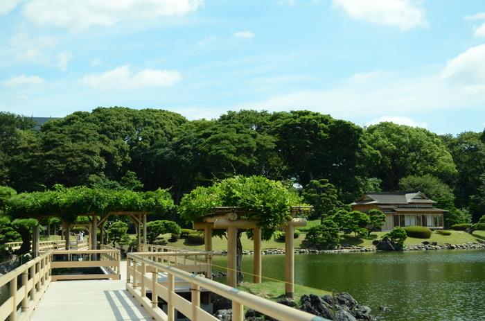 潮入の池の岸と中島を結ぶのがお伝い橋です。池の景色を眺めながら歩くのはまるで水上散歩の気分。中島の御茶屋を通る際にはぜひ足を運びたいですね。