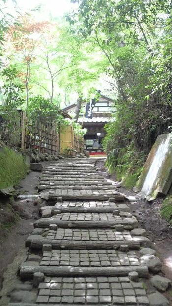 「深沙堂」の左わきにある石段を登っていくと、そこに「深山茶屋」はあります。高台にひっそりあるためあまり混みあわないのも嬉しい。