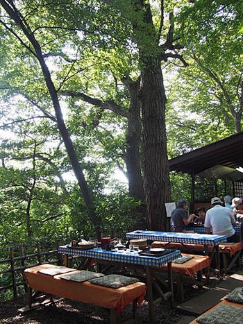 おそばは屋外のテーブルでいただきます。天気の良い日に緑の下でいただくおそばは格別の味わいですよ。