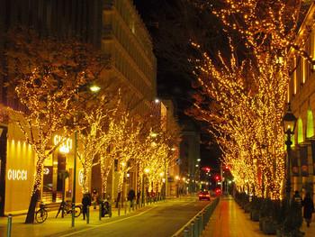 夜は街路樹のイルミネーションがきれいです♪